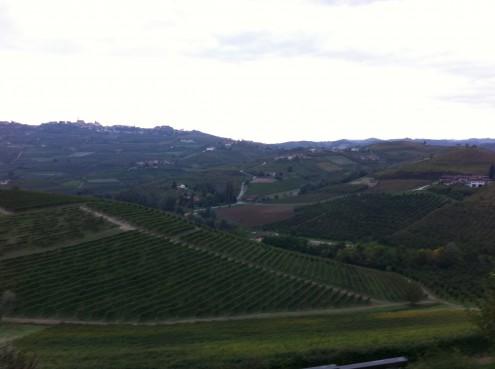 Colline viste dal Castello Grinzane Cavour
