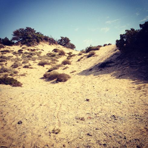 Piscinas_Dune