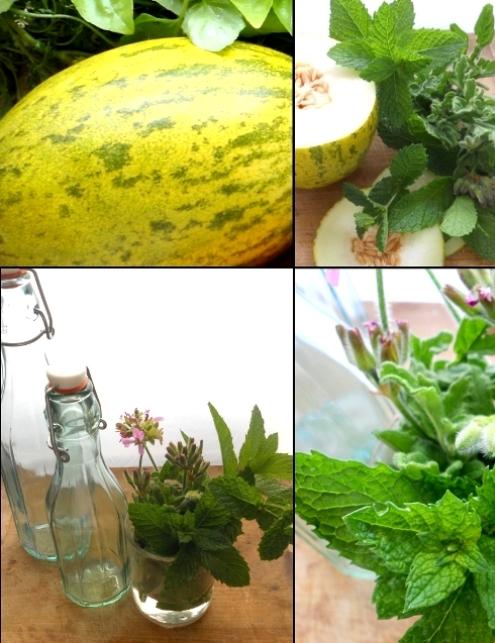 Bibita al mango-melone e lime