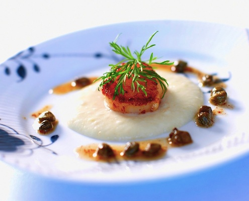 Scallops With Sunchoke Purée By Kalle Bergman