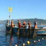 Mare Sostenibile – Tre barche per la tradizione, tre donne per raccontarla